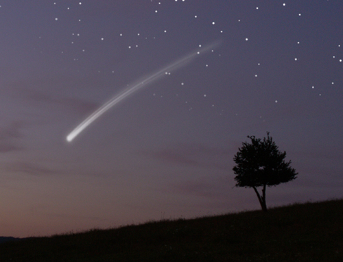shooting star and tree