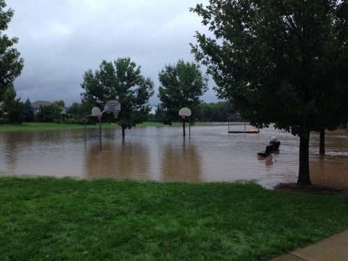 Our neighborhood park, hours before the waters crested.